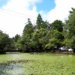 星野村の池の山キャンプ場、ロッジやテントサイトはどんなところ?
