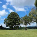 星野村で遊びつくそう!池の山キャンプ場周辺のおすすめスポット3選