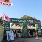 砂の祭典吹上浜2019(鹿児島)の楽しみ方、花火と駐車場について