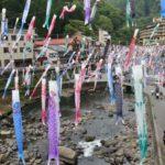 杖立温泉鯉のぼり