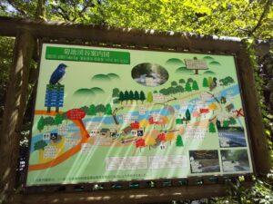 菊池渓谷案内図